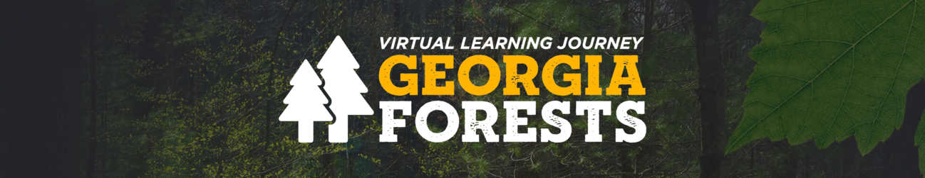 Georgia Forests Banner