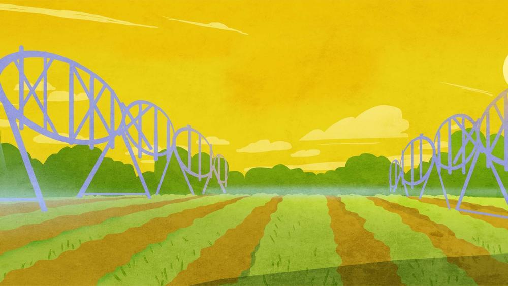 Plains background