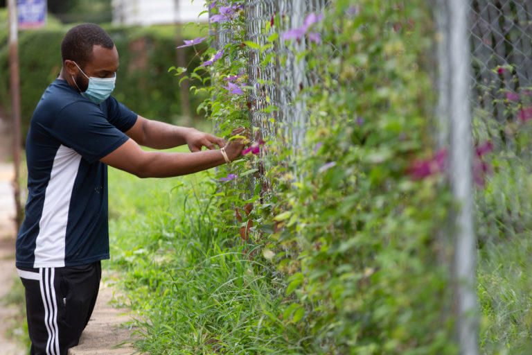 Teboris Barnes tends to flowers along the fence line in his West Atlanta yard.