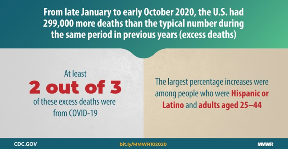excess deaths report