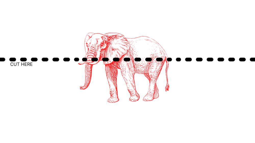 """A dot line across an illustration of a elephant. Small letters read """"cut here"""" nearby."""