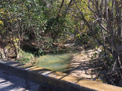 A small stream crosses the property that Wes Stroud hopes will become a pedestrian plaza and hub for food trucks.