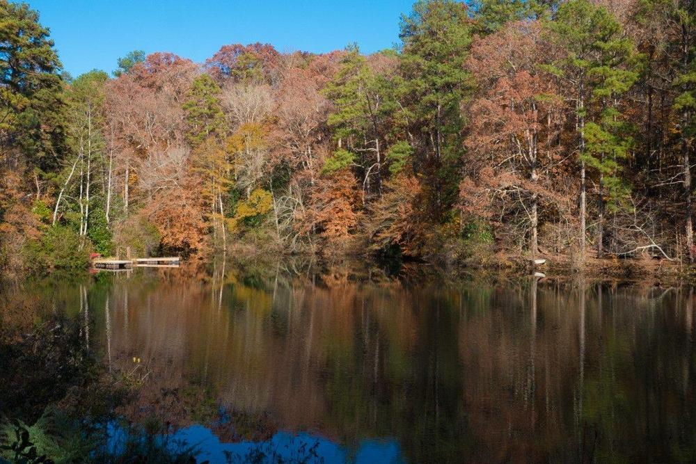 Chattahoochee Nature Center in Roswell