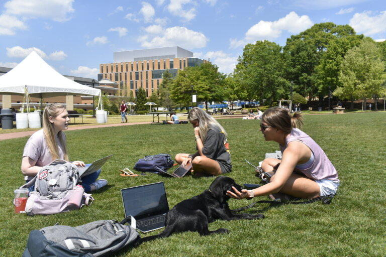 A group of Kennesaw State University students and their puppy do some classwork on the campus green this week.