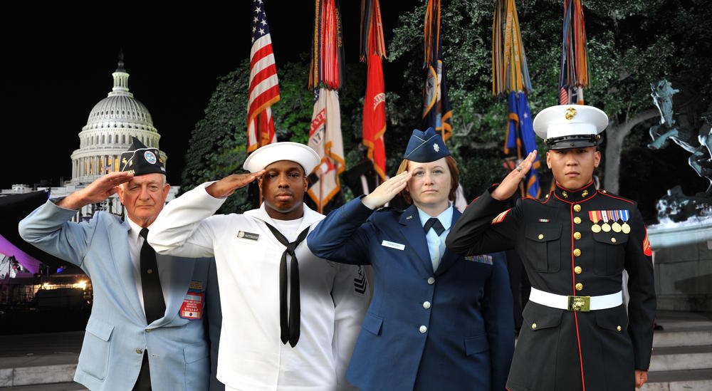 Members and veterans of various military branches salute.
