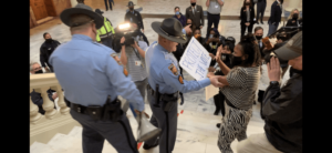Georgia state Rep. Park Cannon spoke to a U.S. Senate panel Thursday about the need for federal protection of voting rights. She protested Georgia's new election rules during legislative debate.