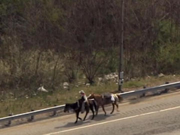 Man on horse on freeway