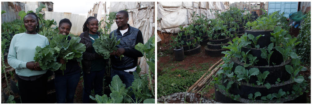 Left: Urban farmer Victor Edalia (in white shirt) with three beneficiaries of his free veggies (left to right): Sheila Musimbi, a single mom; Celine Oinga, who comes from a family of 9 siblings; and Jackline Oyamo, jobless due to the pandemic. Right: Edalia uses modern urban farming methods, including this spiral planter that holds up to 100 seedlings.