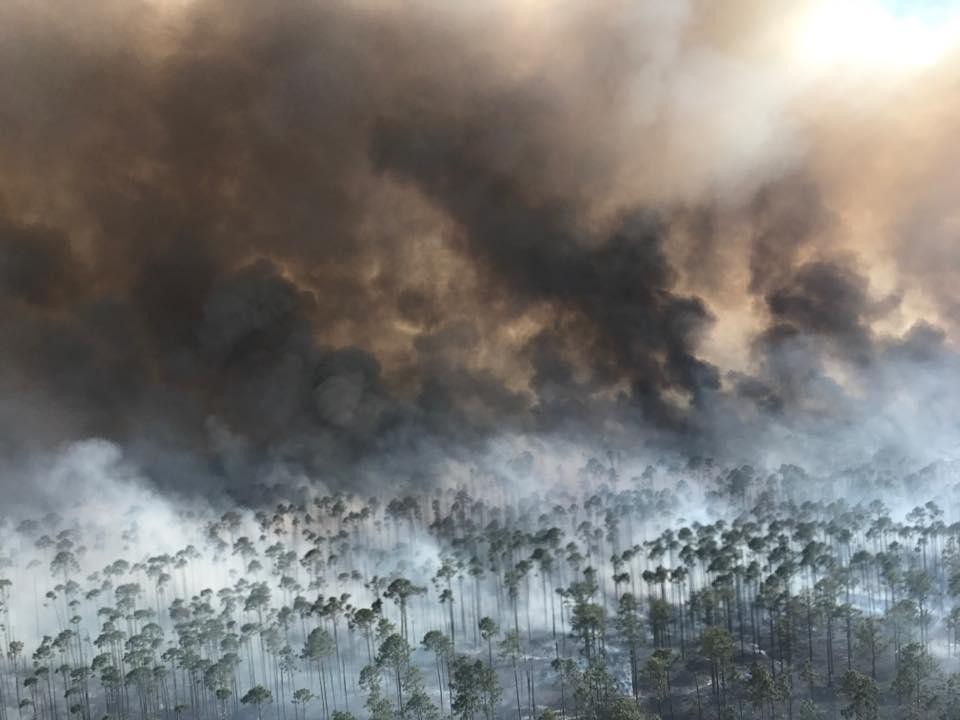Sustained winds up to 8 mph were expected to keep pushing flames Thursday into areas of swamp parched by drought inside the Okefenokee National Wildlife Refuge, where a lightning strike sparked the blaze April 6.