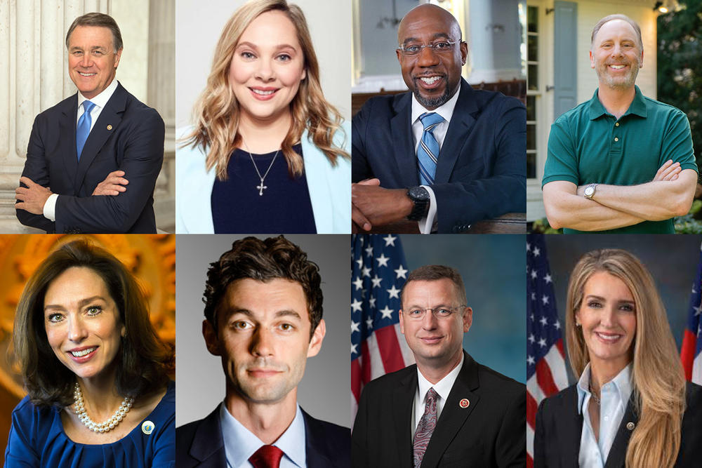Candidates include (from top left to bottom right) incumbent Sen. David Perdue, Democrats Sarah Riggs Amico, Raphael Warnock, Matt Lieberman, Teresa Tomlinson and Jon Ossoff, Rep. Doug Collins (R-Gainesville) and incumbent Sen. Kelly Loeffler (R-Ga.)