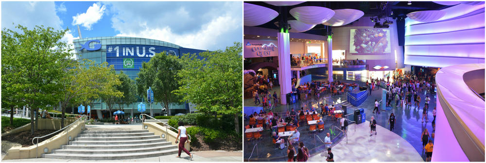 (Left) The Georgia Aquarium is very proud of it's top rating on TripAdvisor. (Right) Inside the aquarium on a busy summer weekday afternoon.