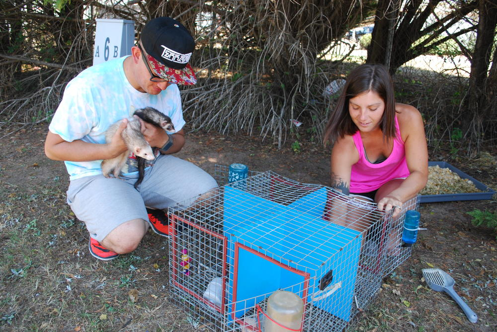 Kayla Simmons and George Cooper tend to ferrets.