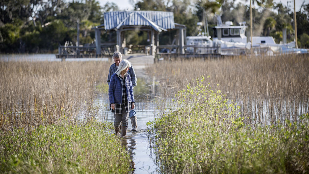 Wanda and David Scott's walkway floods more and more frequently as sea levels rise. They're worried the water is also reaching their septic system.