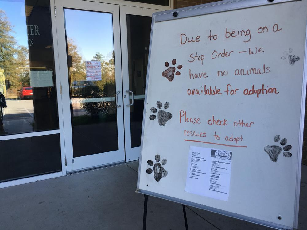 The Macon-Bibb County Animal Shelter was cleared Thursday to reopen after the Georgia Department of Agriculture shut them down after failed inspections in October.