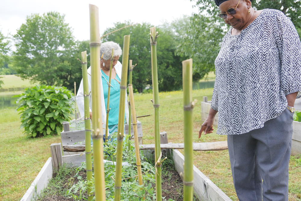 Eloise H. Boyd, left, and Ida McClinton check on the garden behind the Twiggs County Senior Center. The food from the garden figures into communal meals at the center, something in keeping with the local plan to stem senior hunger in Twiggs County.