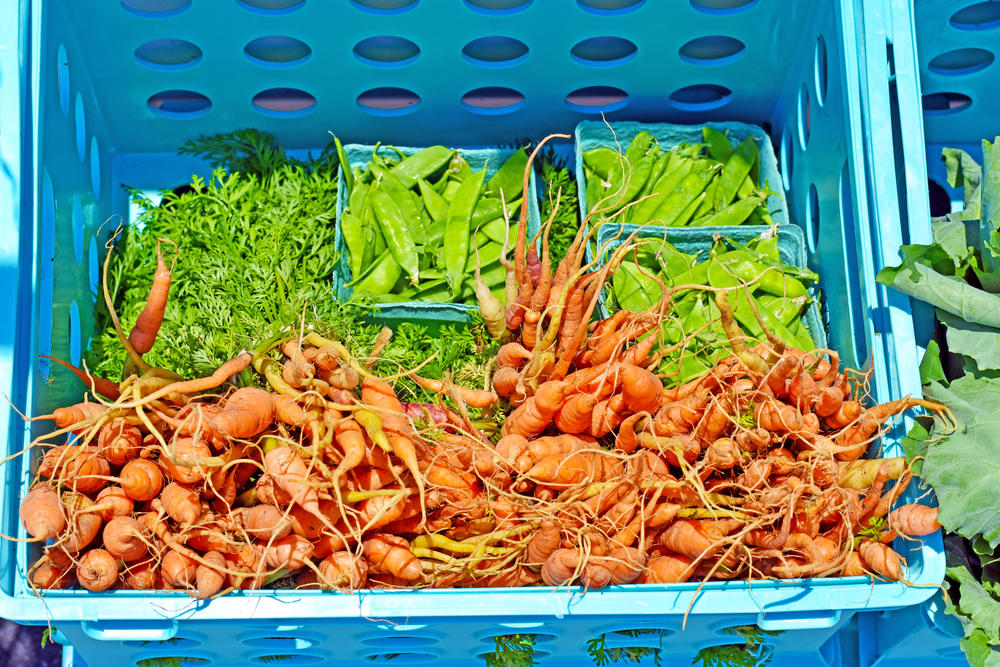 Fresh carrots and snow peas are a few of the vegetables sold on the Farm Bus.