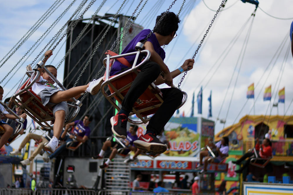 Fairgoers at the Georgia National Fair in Perry enjoy swings. Elsewhere on the grounds, the secretary of state's office demonstrated the new ballot-marking device voting machines that will be in use starting in 2020.