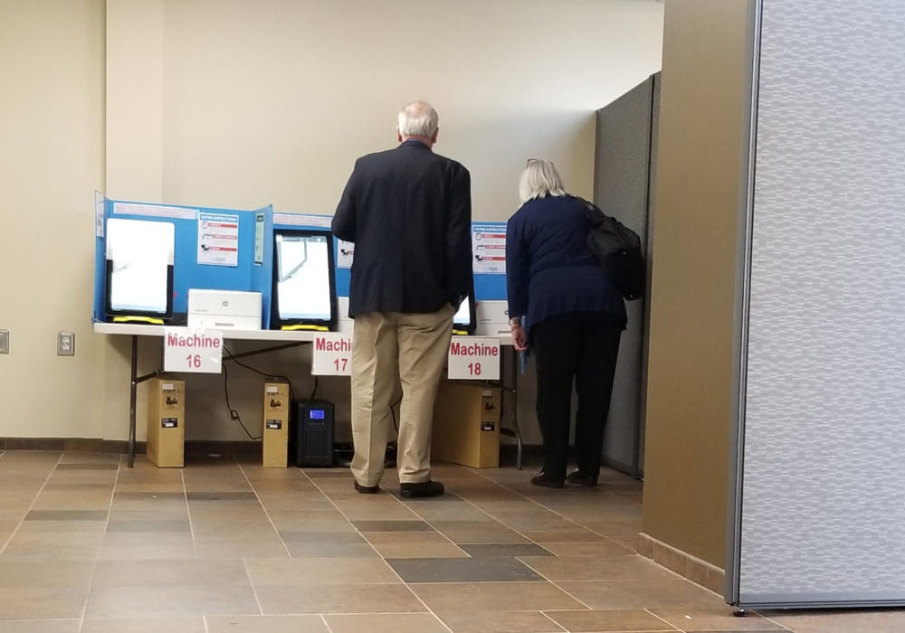 Richard DeMillo and Marilyn Marks look at a Dominion ballot-marking device at a voting precinct in Paulding County on Nov. 5, 2019.
