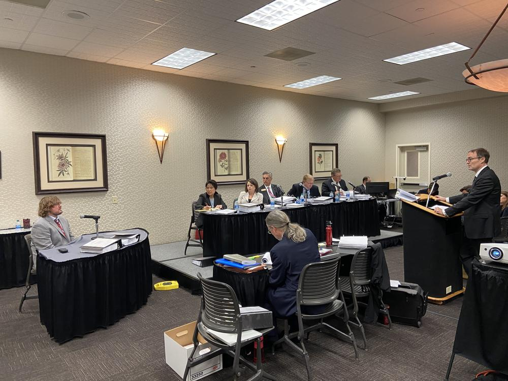 Athens-Clarke Board of Elections Chair Jesse Evans appears before the Georgia State Election Board.