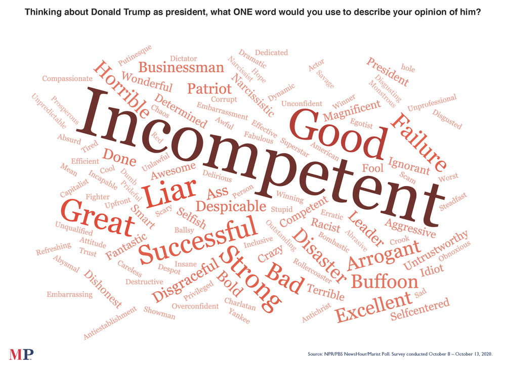 The NPR/<em>PBS NewsHour</em>/Marist poll asked what word comes to mind when thinking about President Trump.