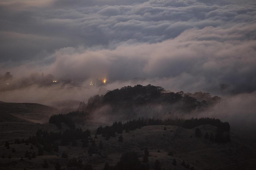 Clouds envelope the Cedars of God Reserve in Bisharre.