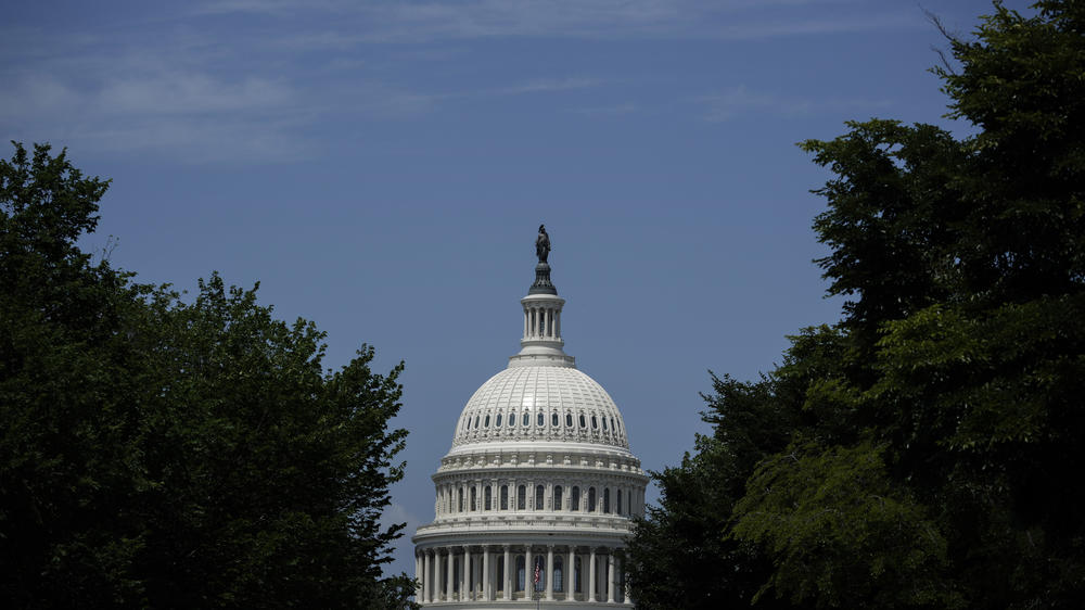 Democrats have a tenuous hold on Congress.