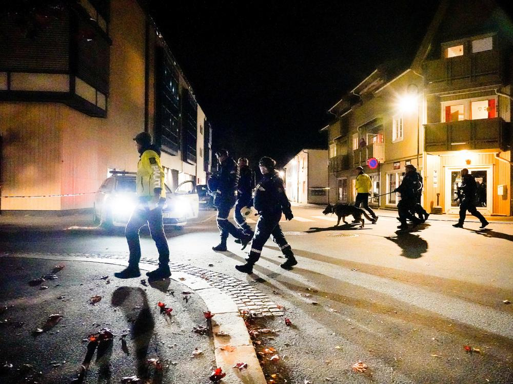 Police officers investigate a scene in Kongsberg, Norway, after a man armed with a bow killed several people before he was arrested Wednesday.
