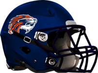 Lakeview Academy Helmet