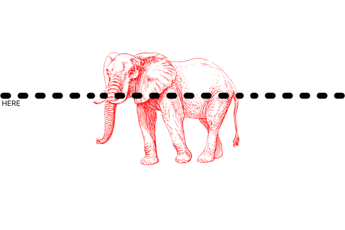 "A dot line across an illustration of a elephant. Small letters read ""cut here"" nearby."