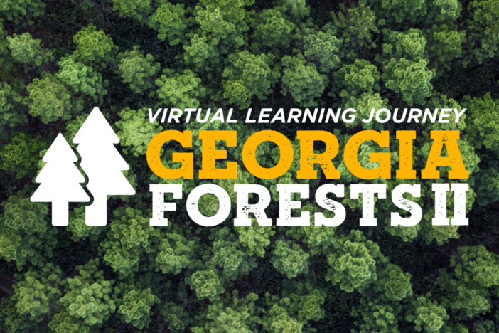 Georgia Forests II logo