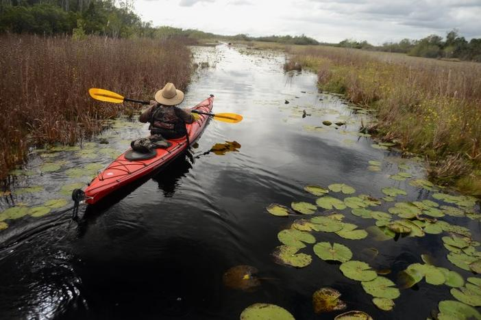 Kayak in Okefenokee Swamp