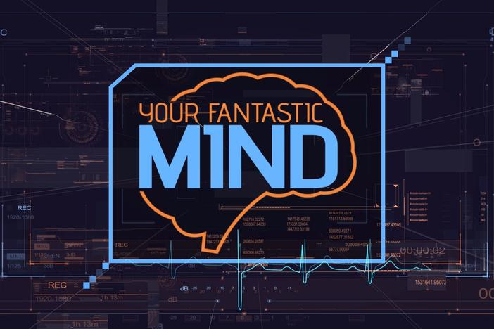 This is a show exploring the mystery and the science of the amazing human brain.