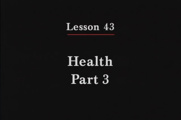 JPN II, Lesson 43. The topic covered is health: describing more physical conditions.