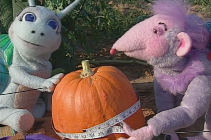 Blossom and Snappy eat popcorn and try to find out who has more.