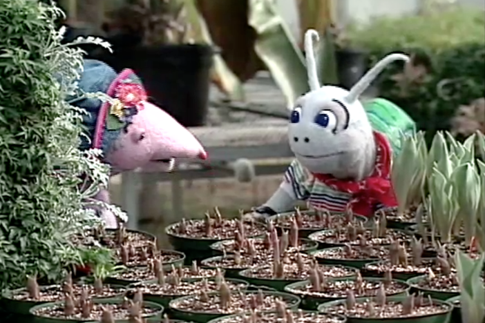 Blossom and Snappy decide to plant a garden.