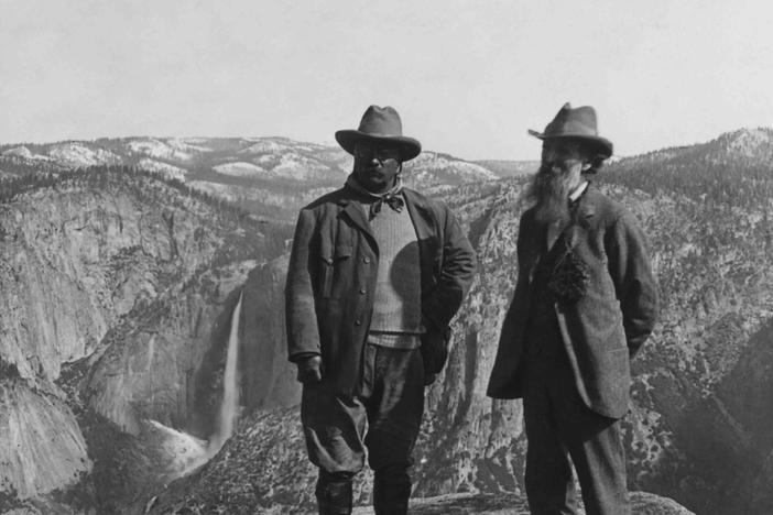 Investigate the efforts of Theodore Roosevelt and others to preserve pristine lands.