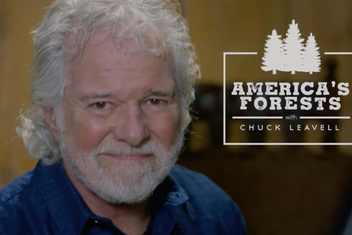 Rolling Stones keyboardist Chuck Leavell hosts a new series about sustainable forestry.