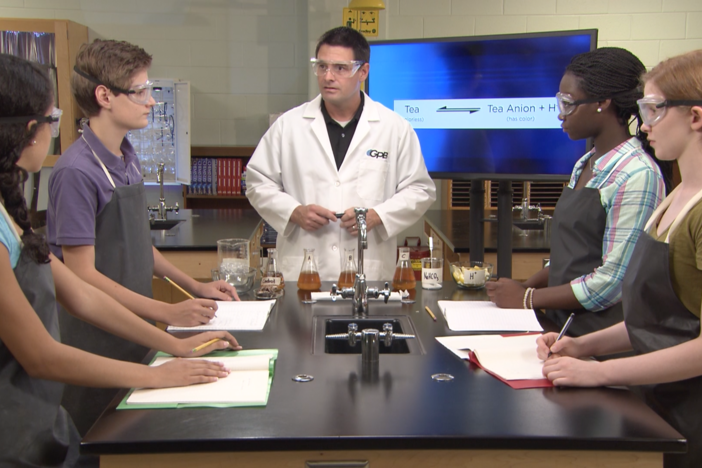 The students explain their examples of real world chemical equilibrium.
