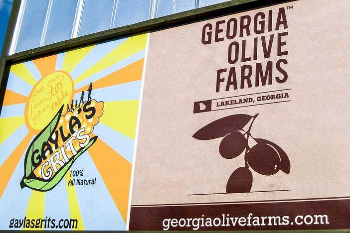 It's a little known fact that Georgia farms once grew olives. It was back in the 1800's...
