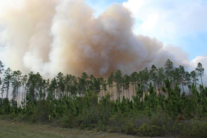 Nearly all of the burned acreage has been confined to the Okefenokee National Wildlife Refuge in southeast Georgia and the neighboring Osceola National Forest and John M. Bethea State Forest in Florida.