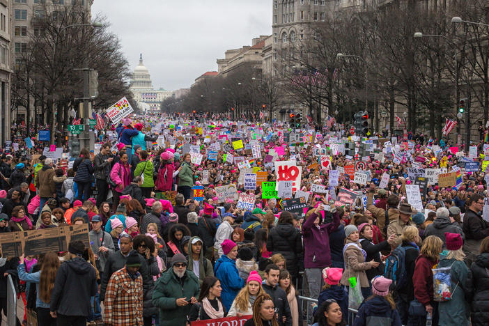 With millions of participants, the Women's March in January 2017 was the largest single-day demonstration in recorded U.S. history.