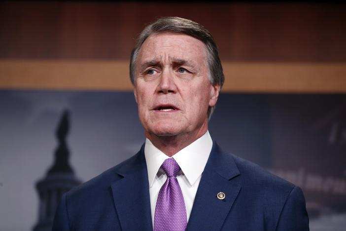 Sen. David Perdue, R-Ga., speaks during a news conference about an immigration bill on Capitol Hill, Monday, Feb. 12, 2018 in Washington.