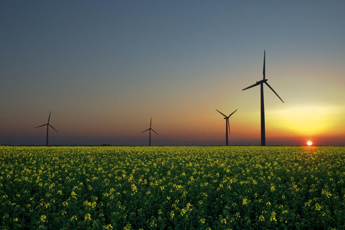 Wind, solar, and hydroelectricity are three emerging renewable sources of energy.