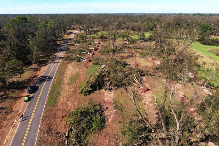15% of the state's pecan acreage was wiped out in the storm.