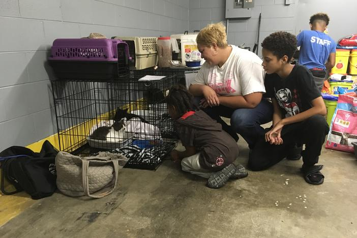 Sophia Ussery and her children visit their American Ragdoll cat at the pet evacuation center in Macon