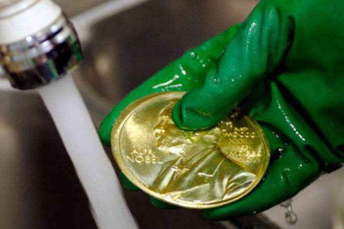 A Nobel Prize gold medal seen during the manufacturing process in the Swedish Mint. The medals, presented to each laureate, are made of 18 karat recycled gold and weigh 175 grams (6.13 ounces). The economics medal weighs 185 grams (6.48 ounces).