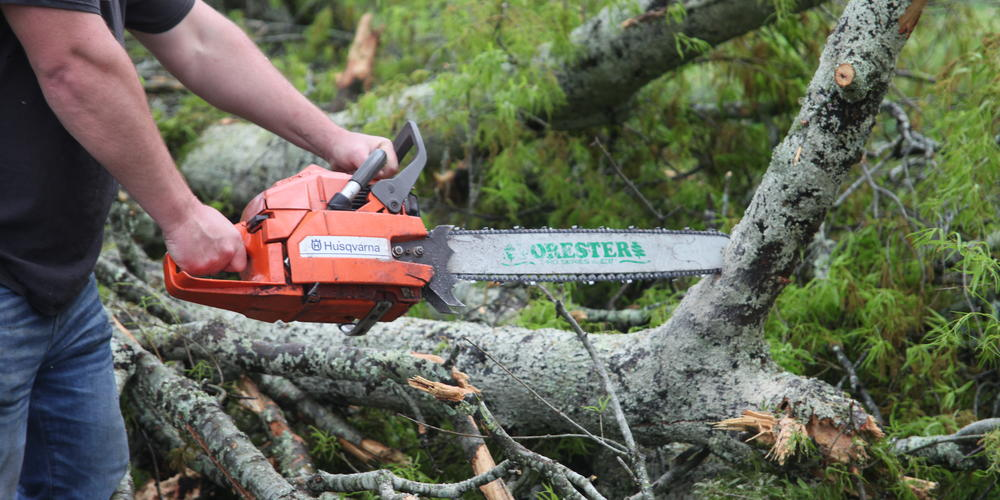 Crews work to eliminate downed trees and debris following deadly tornado in Newnan, Ga.