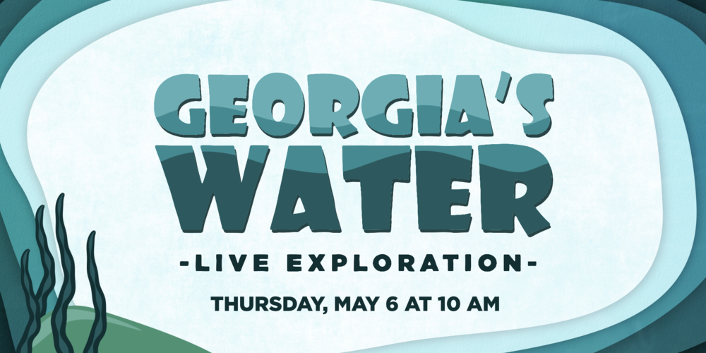 Georgia's Water logo